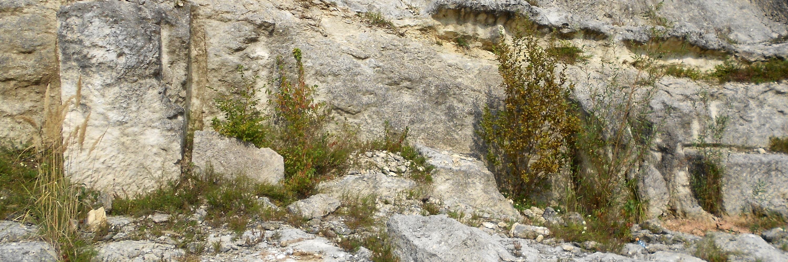 Римская каменоломня в Дардагани