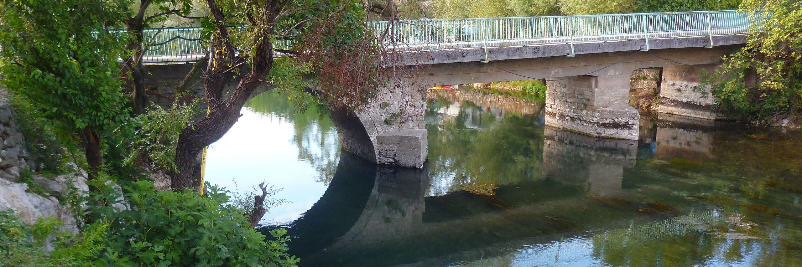 Лекин мост. Фото: Елена Арсениевич, CC BY-SA 3.0