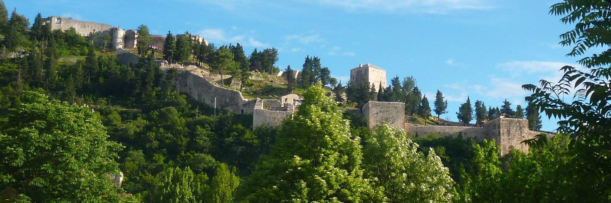 Видошская крепость