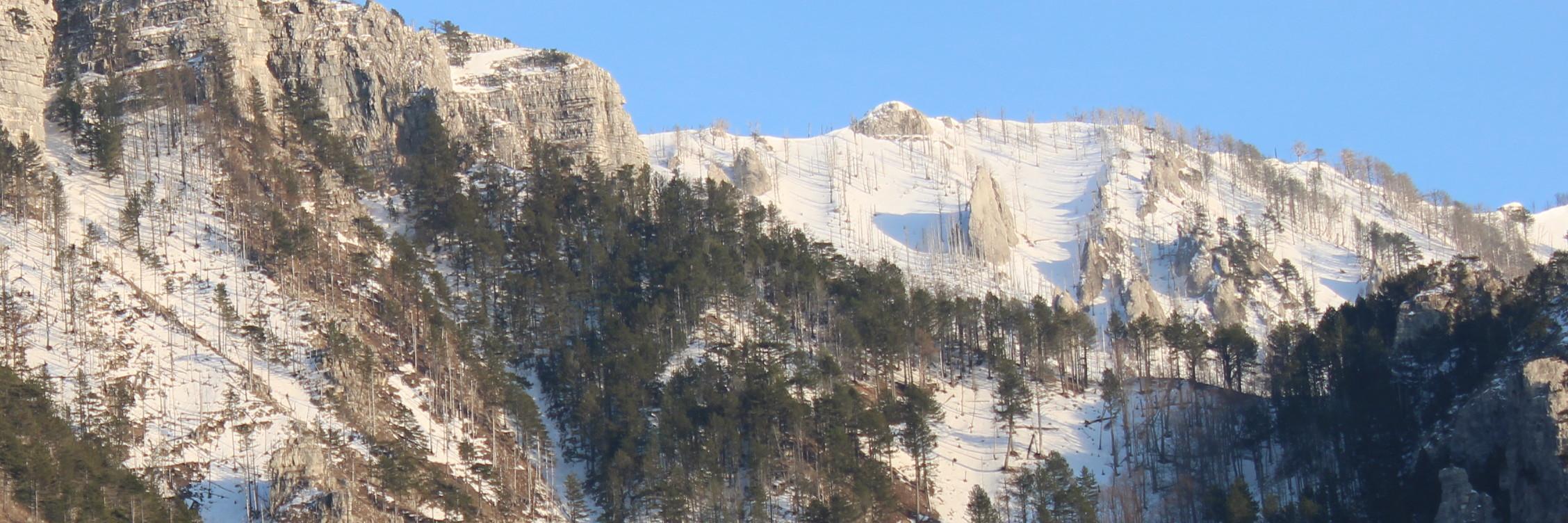 Лыжная трасса на Руиште