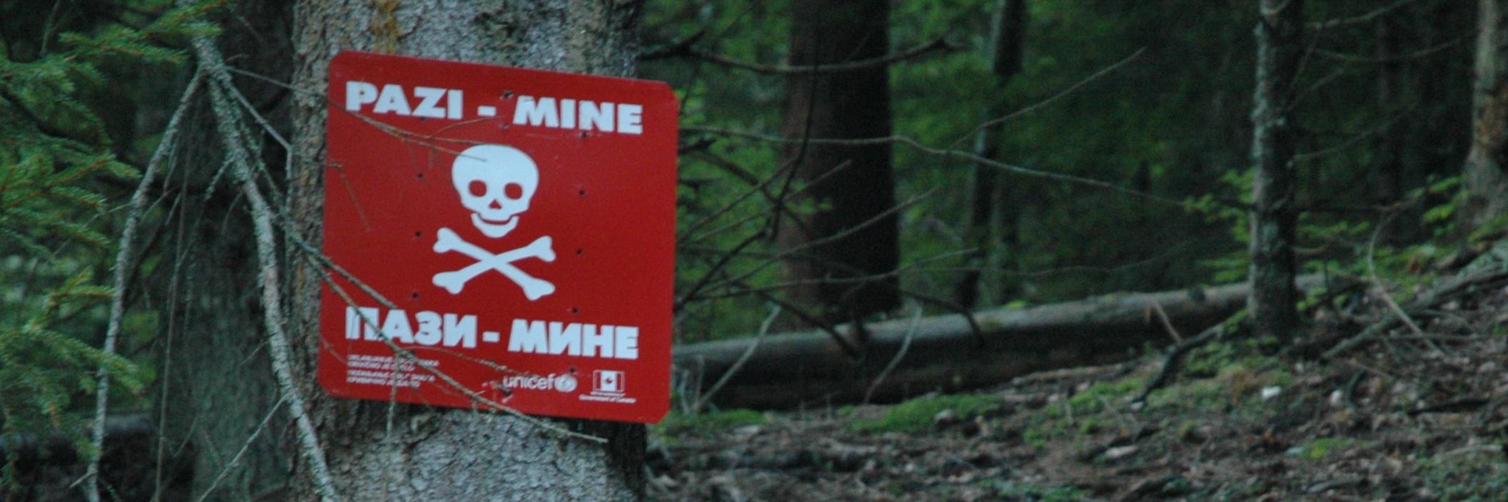 Осторожно, мины! Фото: Jakub Sochacki, CC BY-SA 3.0.